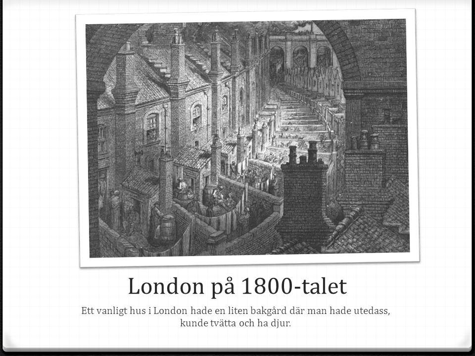 London på 1800-talet Ett vanligt hus i London hade en liten bakgård där man hade utedass, kunde tvätta och ha djur.