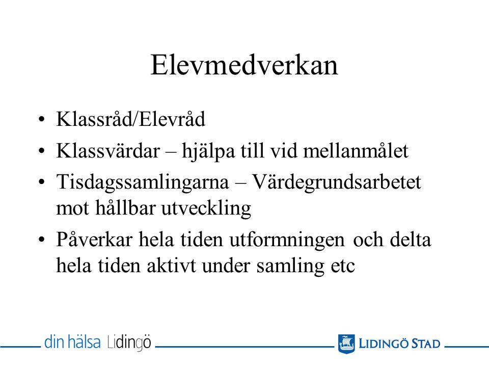 Elevmedverkan Klassråd/Elevråd