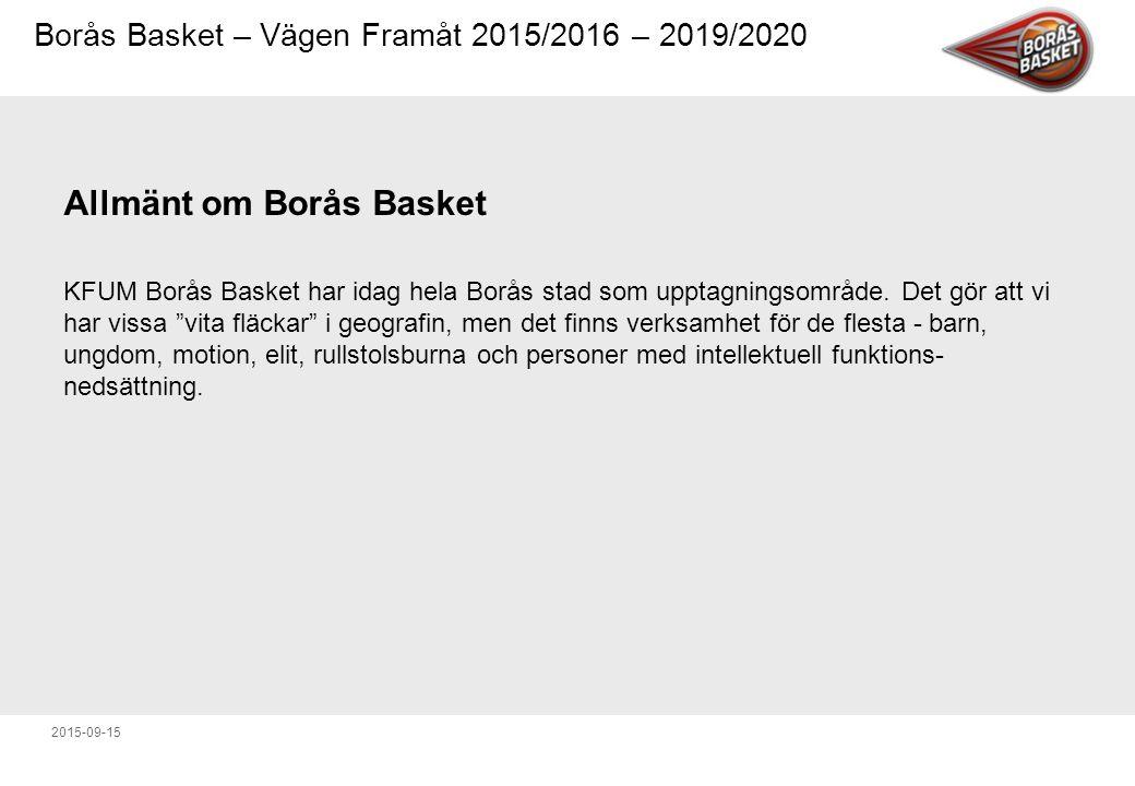 Allmänt om Borås Basket