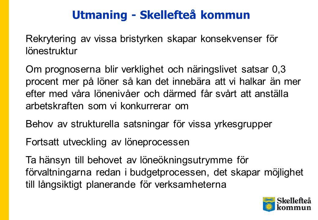 Utmaning - Skellefteå kommun