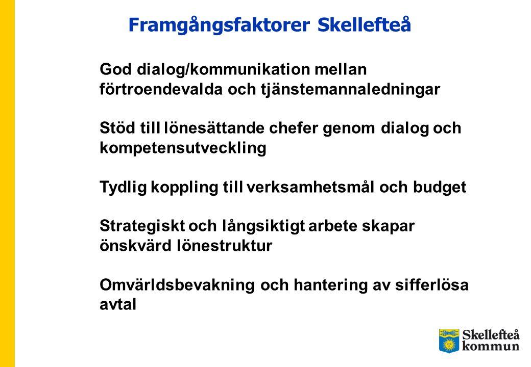 Framgångsfaktorer Skellefteå