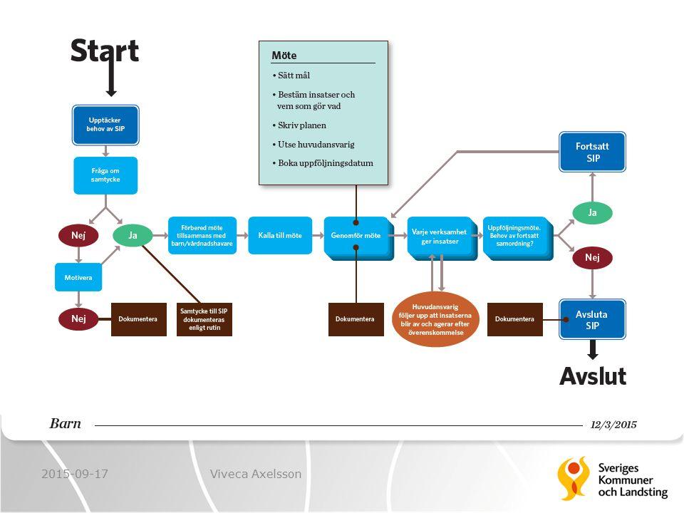 SIP är inte bara en plan eller ett möte, det är en hel arbetsprocess med olika steg. Den kan vara lång och sträcka sig över flera år eller över en kortare tid.