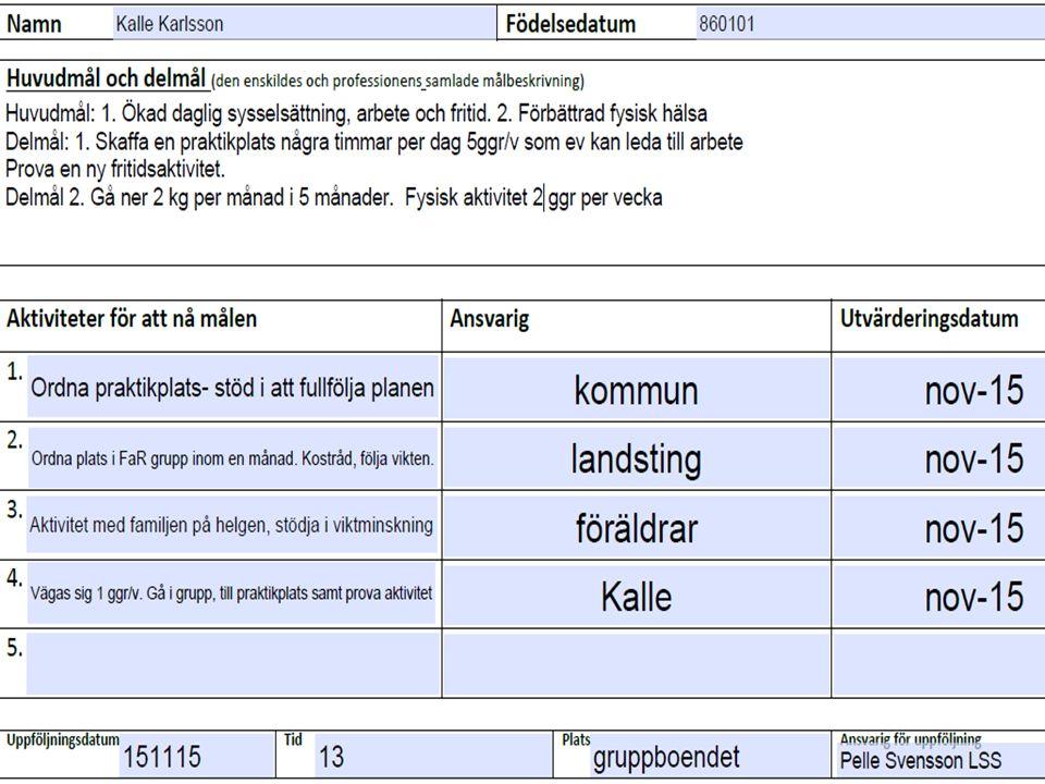 Exempel plan Nils! 2015-09-17 Viveca Axelsson