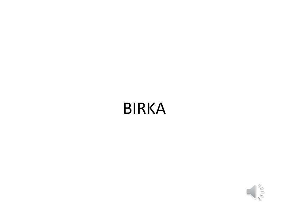 BIRKA