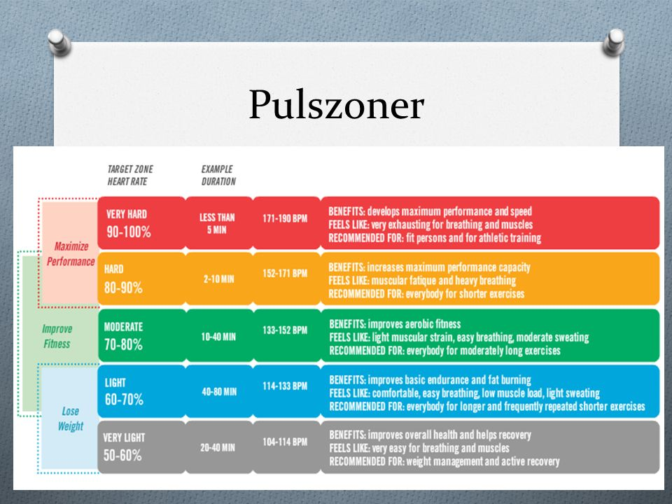 Pulszoner Paulsson & Svalner s.49