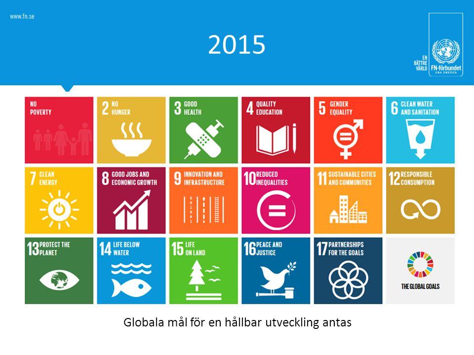 Globala mål för en hållbar utveckling antas