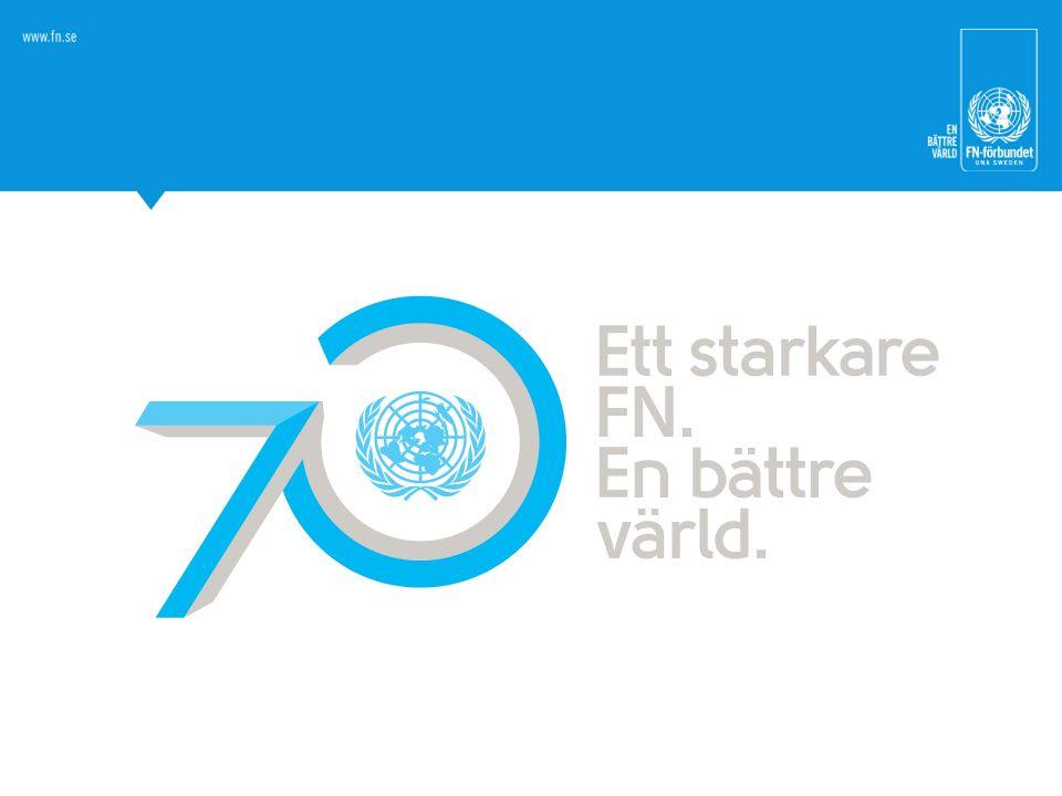 Som ni ser i den här föreläsningen har FN haft både motgångar och framgångar, och så kommer det förmodligen fortsätta att vara.