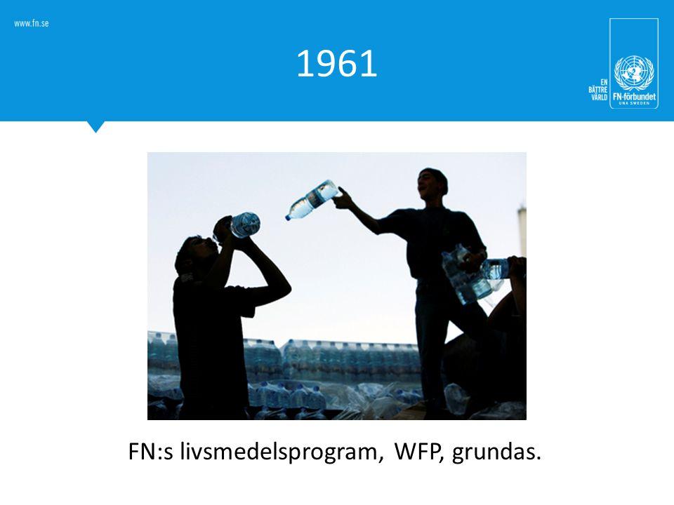 FN:s livsmedelsprogram, WFP, grundas.