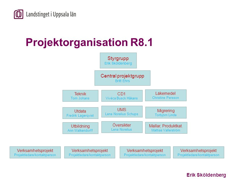 Projektorganisation R8.1