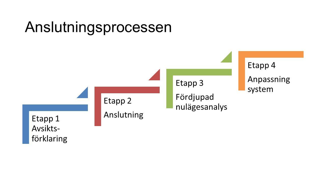 Anslutningsprocessen