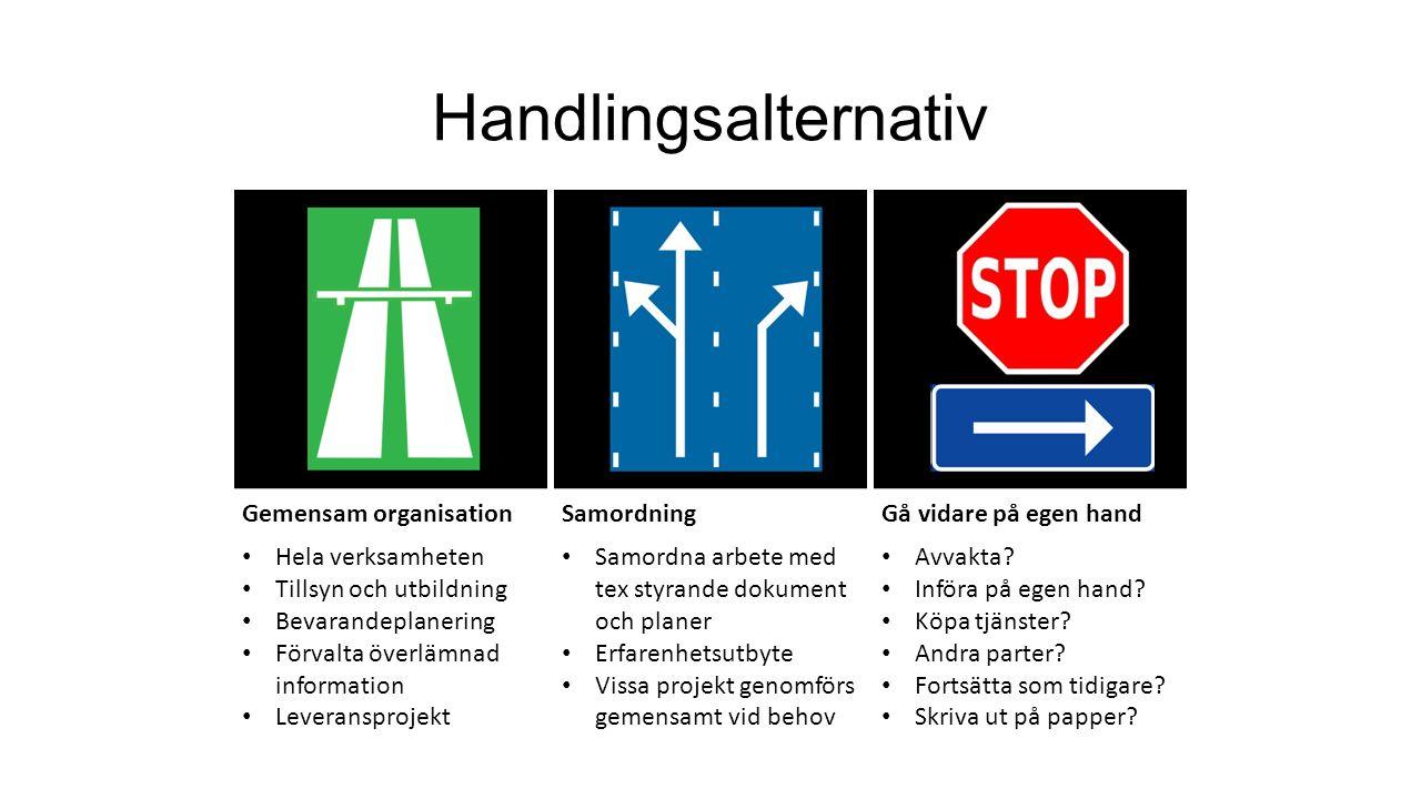 Handlingsalternativ Gemensam organisation Samordning