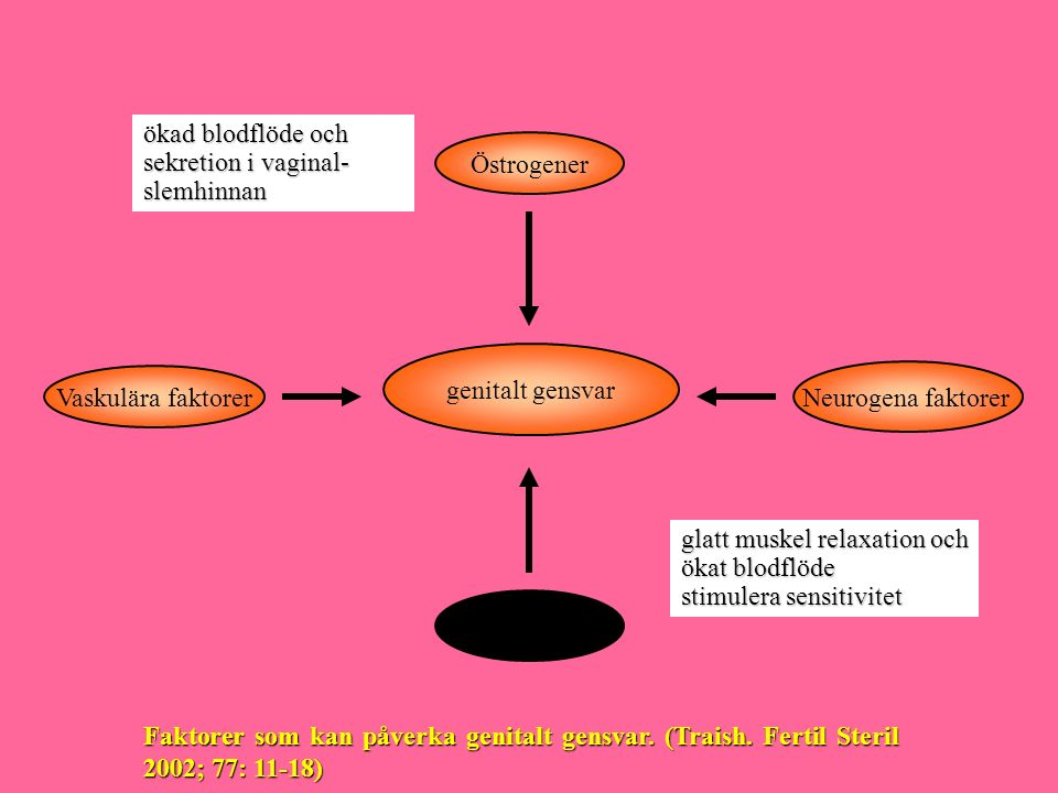 ökad blodflöde och sekretion i vaginal- slemhinnan. Östrogener. genitalt gensvar. Vaskulära faktorer.