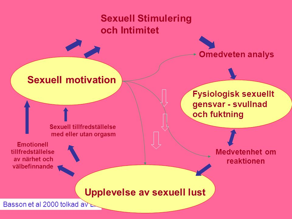 Sexuell motivation Sexuell Stimulering och Intimitet