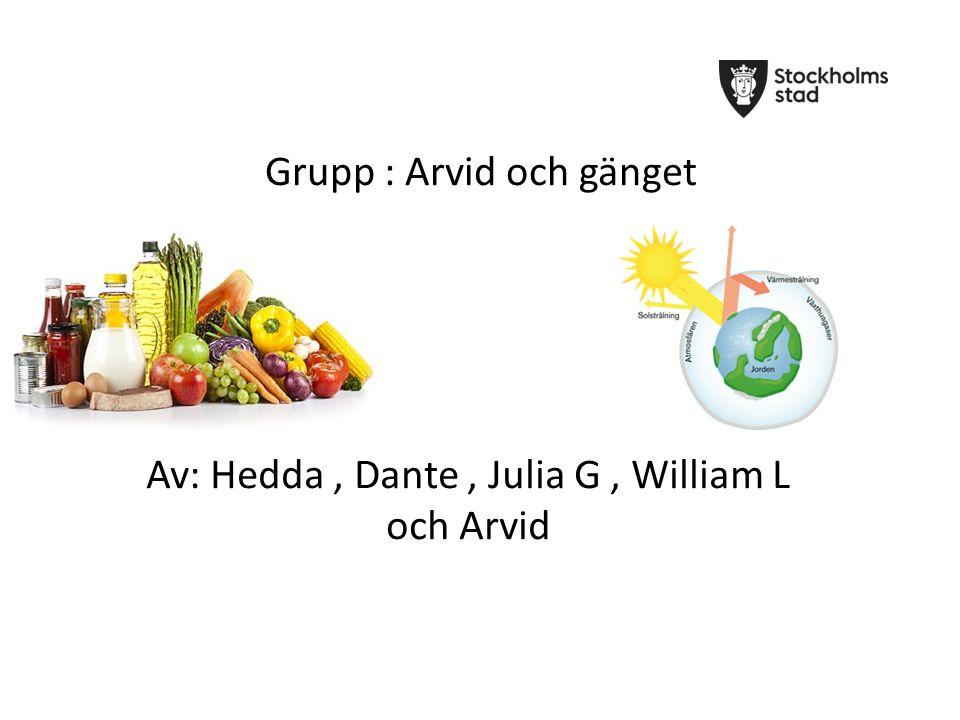 Grupp : Arvid och gänget