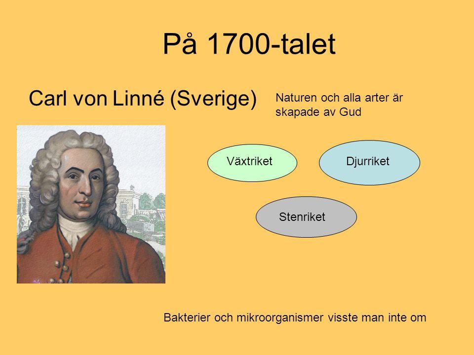 På 1700-talet Carl von Linné (Sverige)