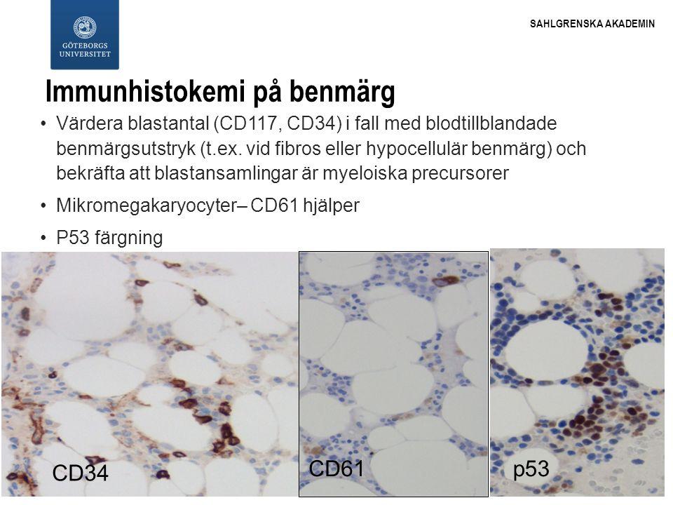 Immunhistokemi på benmärg