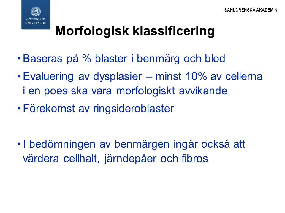 Morfologisk klassificering