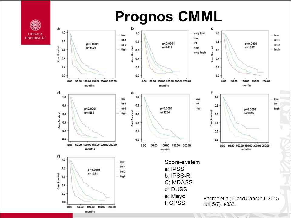 Prognos CMML Score-system a; IPSS b; IPSS-R C; MDASS d; DUSS e; Mayo