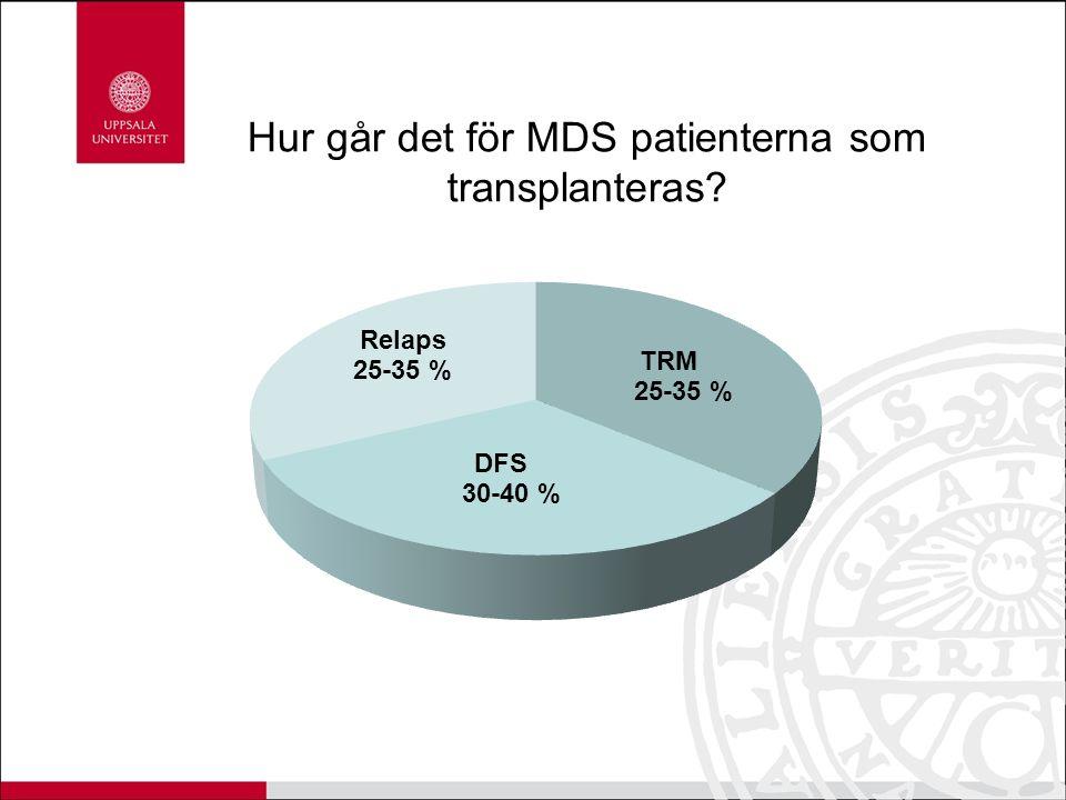 Hur går det för MDS patienterna som transplanteras