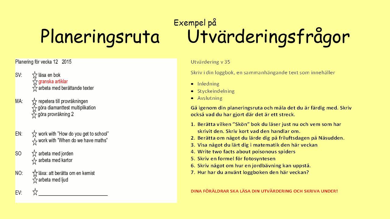Exempel på Planeringsruta Utvärderingsfrågor