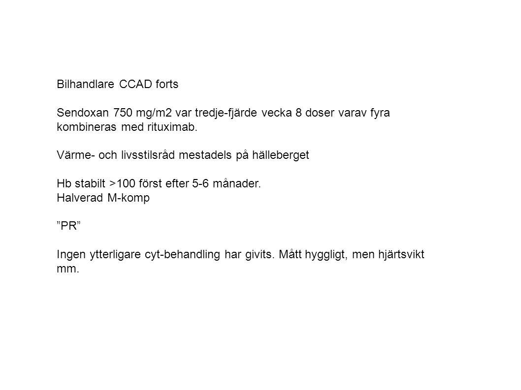 Bilhandlare CCAD forts