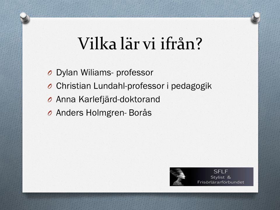 Vilka lär vi ifrån Dylan Wiliams- professor