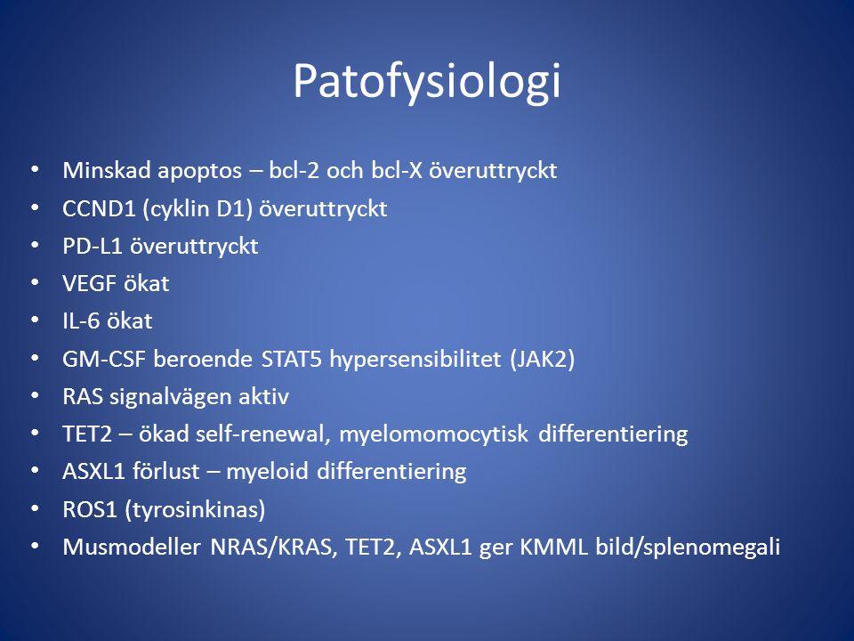 Patofysiologi Minskad apoptos – bcl-2 och bcl-X överuttryckt