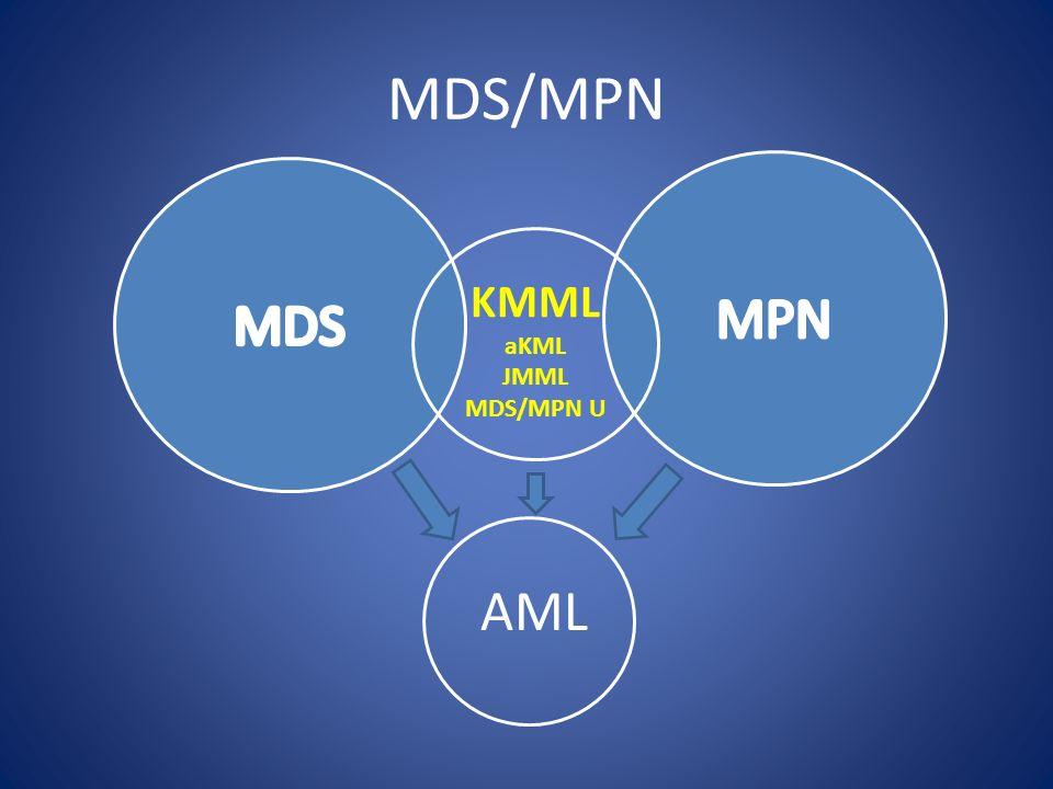 MDS/MPN MPN MDS KMML aKML JMML MDS/MPN U AML