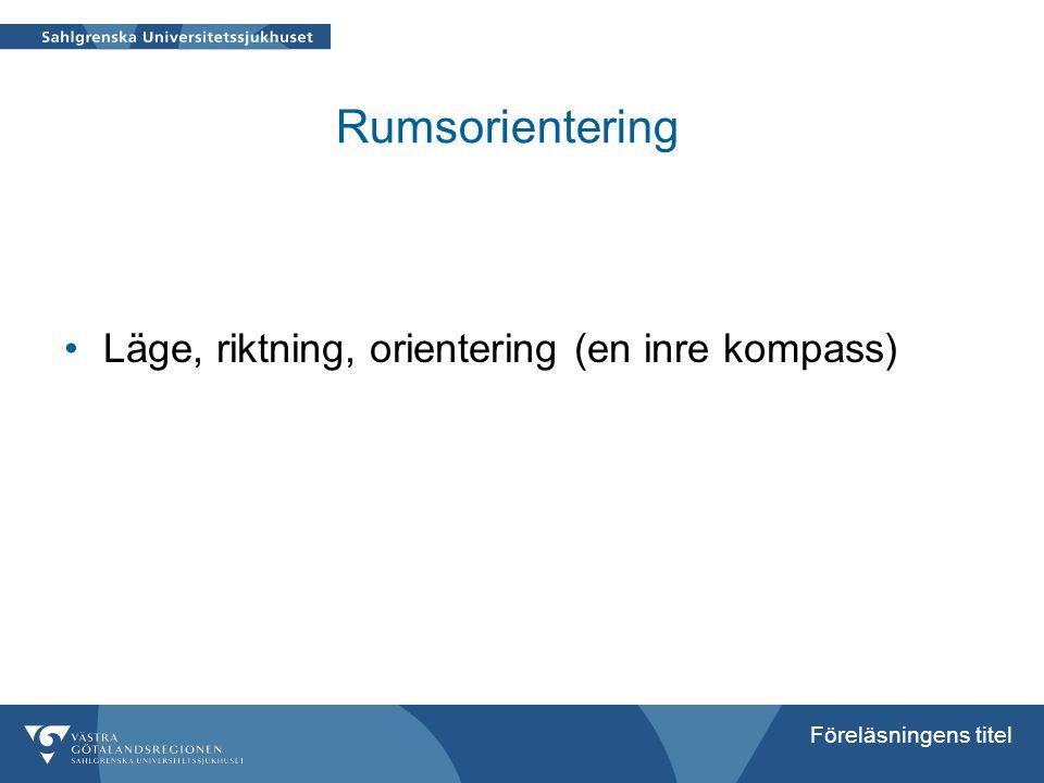 Rumsorientering Läge, riktning, orientering (en inre kompass)