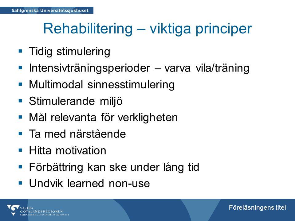 Rehabilitering – viktiga principer