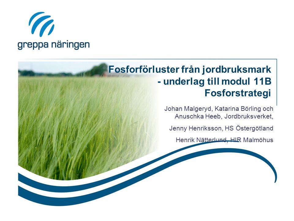 Fosforförluster från jordbruksmark - underlag till modul 11B Fosforstrategi