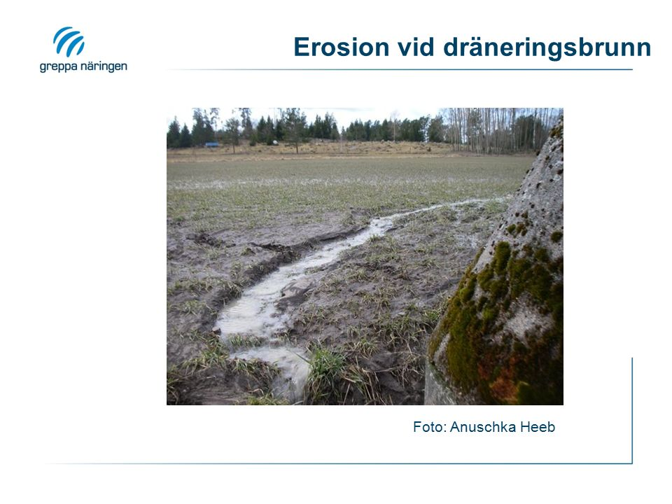 Erosion vid dräneringsbrunn