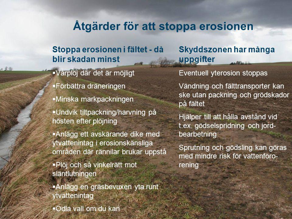 Åtgärder för att stoppa erosionen