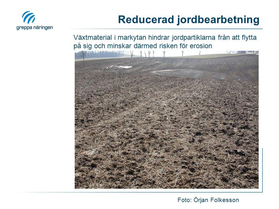 Reducerad jordbearbetning