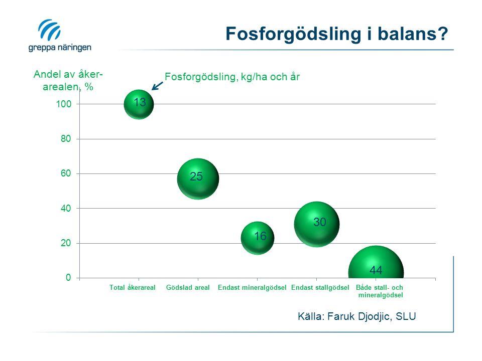 Fosforgödsling i balans