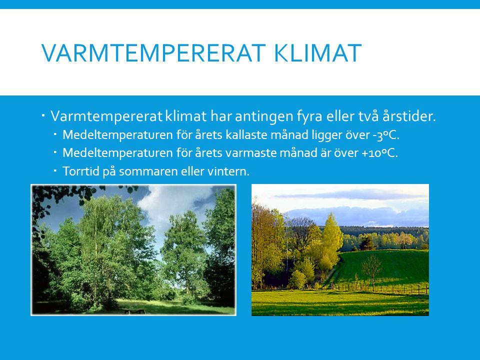 Varmtempererat klimat