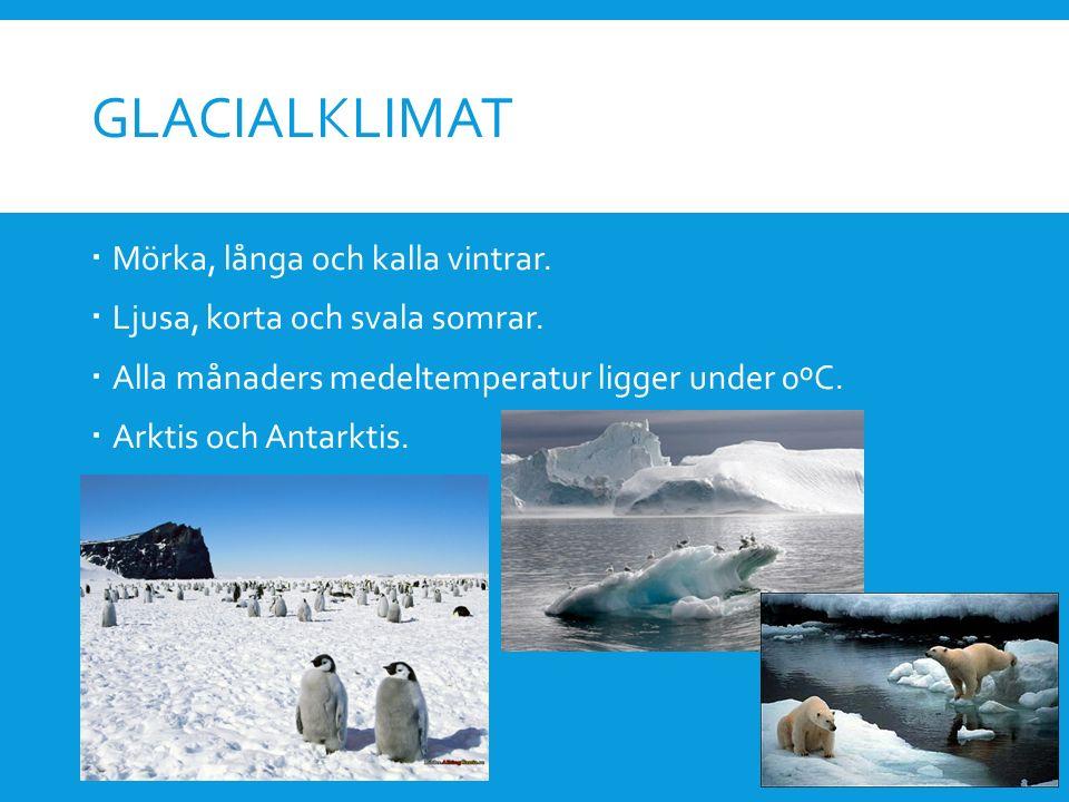 Glacialklimat Mörka, långa och kalla vintrar.
