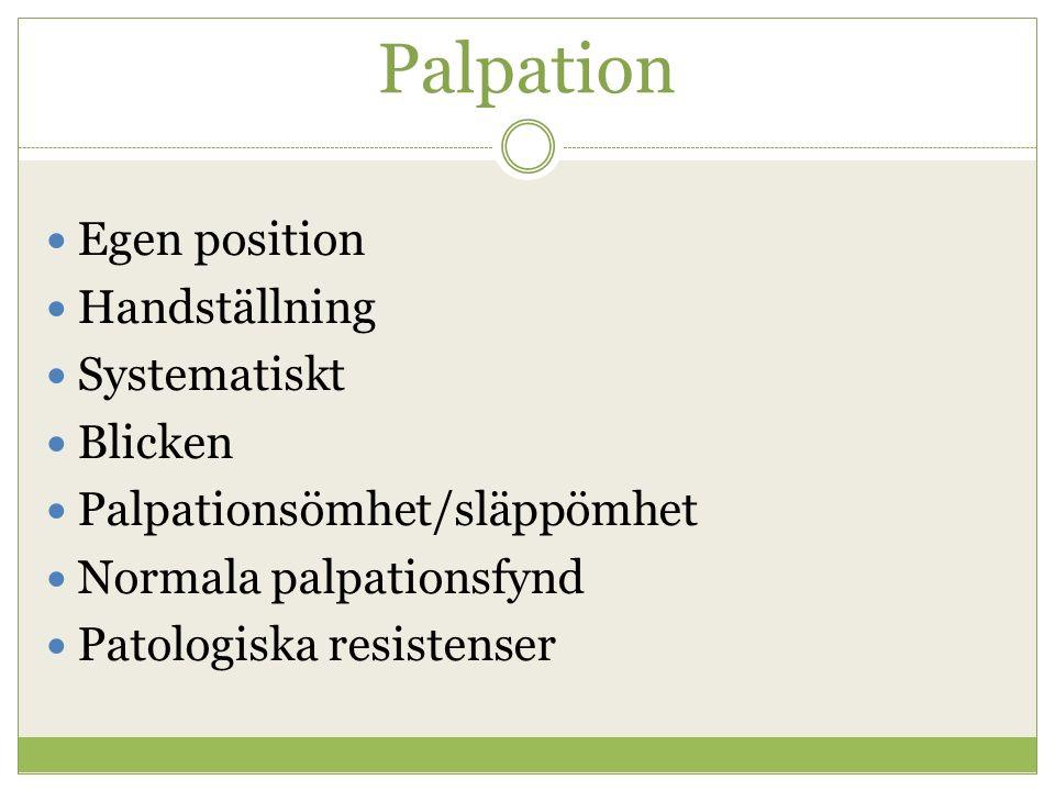 Palpation Egen position Handställning Systematiskt Blicken