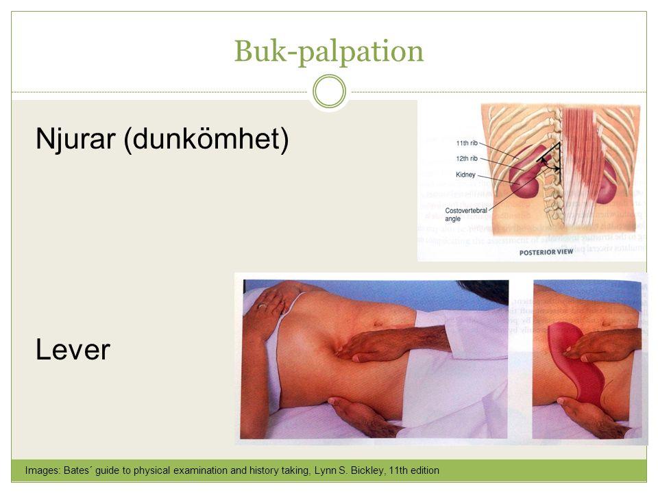 Buk-palpation Njurar (dunkömhet) Lever