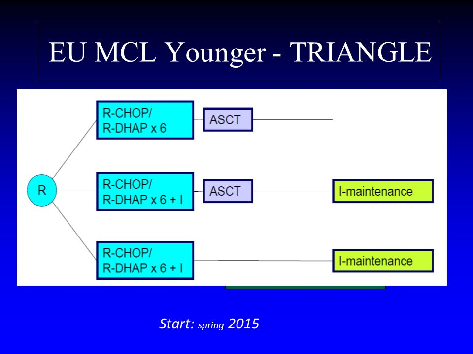 EU MCL Younger - TRIANGLE