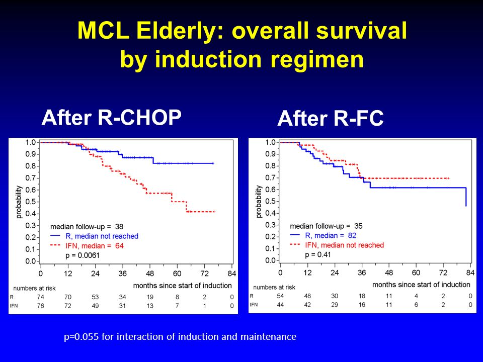 MCL Elderly: overall survival by induction regimen