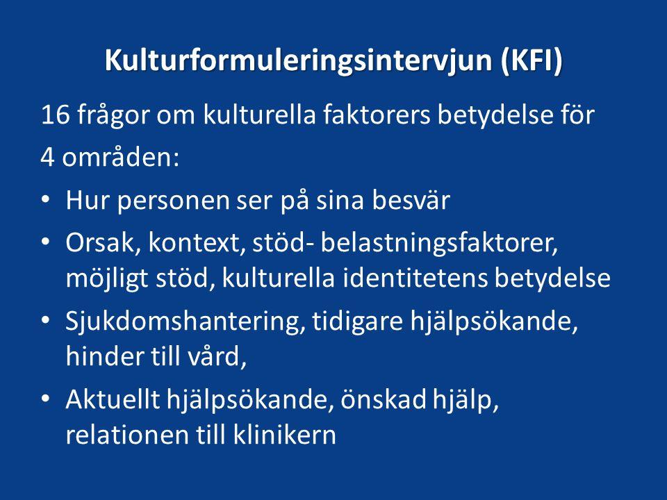 Kulturformuleringsintervjun (KFI)