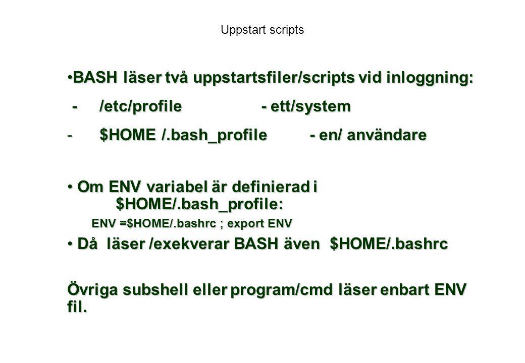 BASH läser två uppstartsfiler/scripts vid inloggning:
