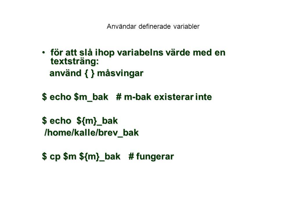 Användar definerade variabler
