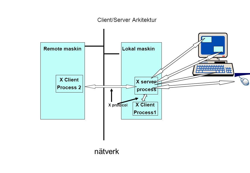 Client/Server Arkitektur