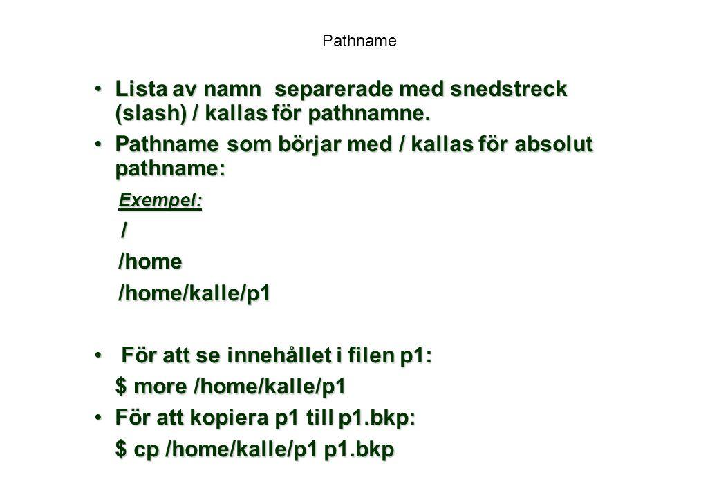 Pathname som börjar med / kallas för absolut pathname: Exempel: /