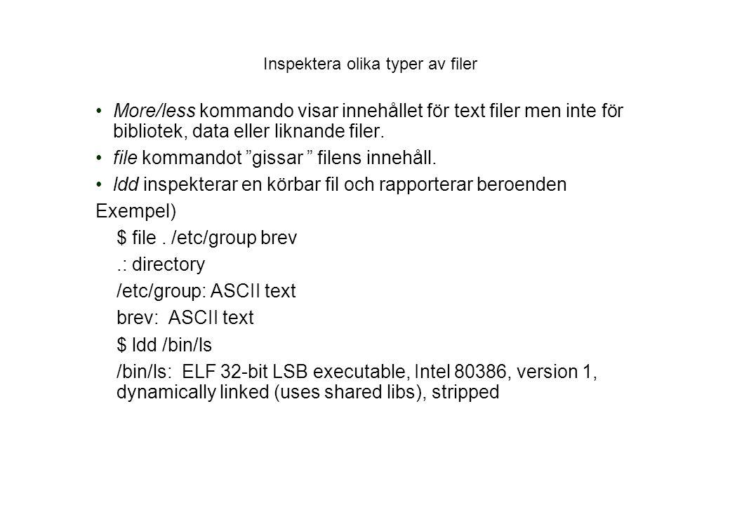 Inspektera olika typer av filer