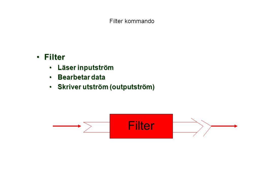 Filter Filter Läser inputström Bearbetar data