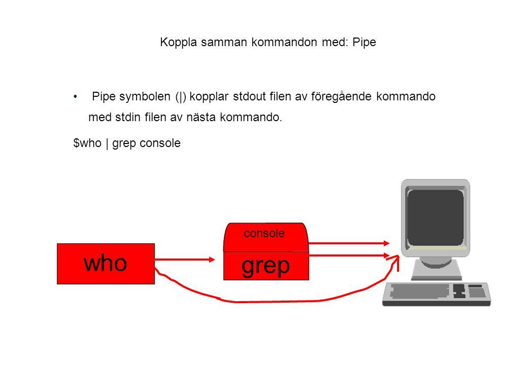 Koppla samman kommandon med: Pipe