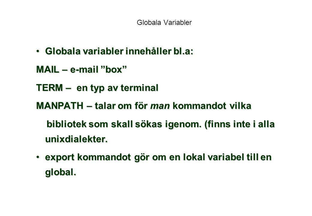 Globala variabler innehåller bl.a: MAIL – e-mail box